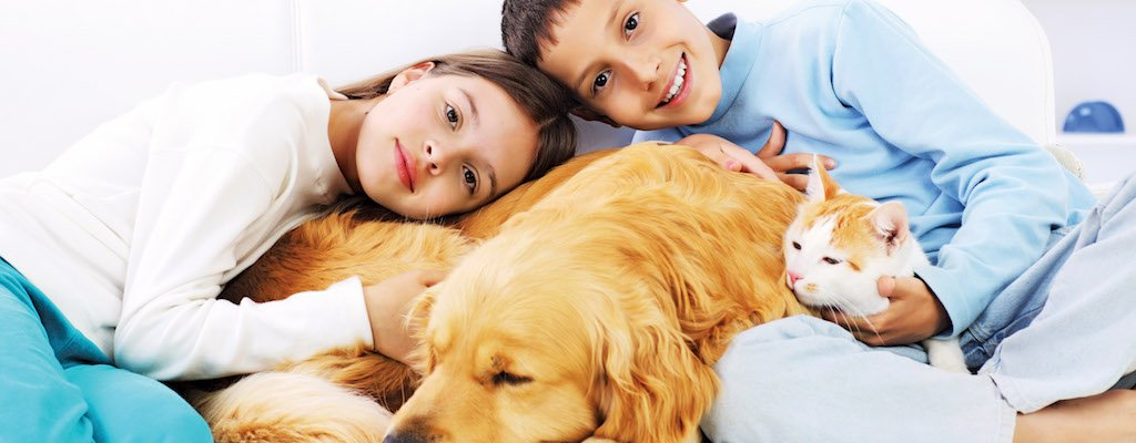 How to Choose the Right Pet for Your Family