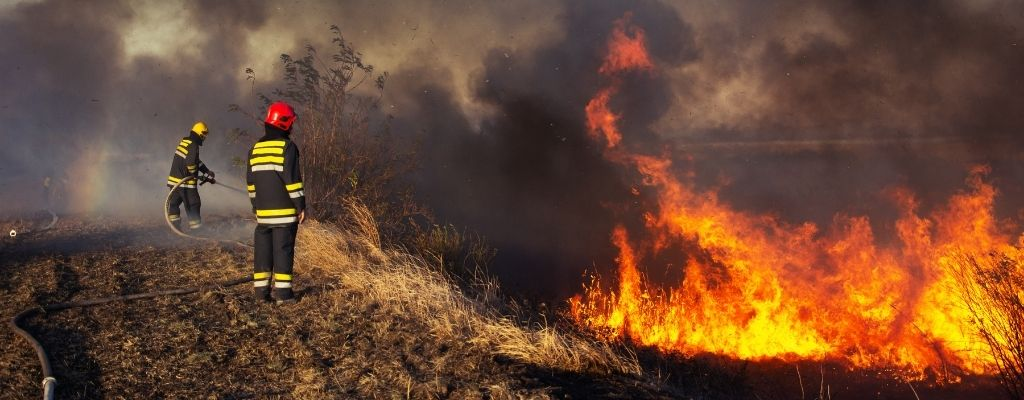 The Different Types of Firefighters for Wildfires